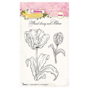 Stempel Clear, Celebrate Spring, A6 / 105 x 148 mm,  3 - teilig, transparent 170