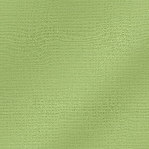 My Colors Cardstock, Glimmer 25505, 30,6 x 30,6 cm / 12 x 12 Inch, 216 g/m², Willow Green, 2 BOGEN IM SET