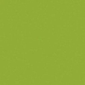 Martha Stewart Multi-Surface Acrylic, Satin, 59 ml, green curry