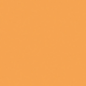 Martha Stewart Multi-Surface Acrylic, Satin, 59 ml, cantaloupe